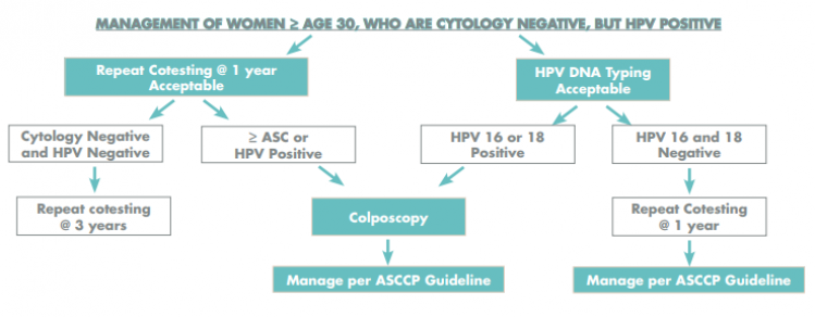 Hpv high risk positive treatment, Hpv high risk but normal pap, Pap smear exam